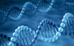 Policymakers Should Set Genetic Testing  Free
