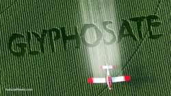 Study finds glyphosate causes antibiotic resistance